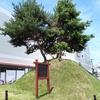 旧奥州街道の上田一里塚。徳川幕府の国内統一事業。2004年の台風被害。