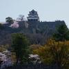 2018.3.31 日本一の天守閣から桜咲く城下を見下ろして