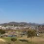 桜の季節に石川河川公園に子供達と行くのは最高!