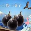 夏野菜料理には清水の【折戸なす】を!徳川家康も愛した三茄子!