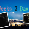 36 week 3 day