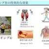 スロージョギングの特異的な効果 〜スロージョギング特別講義 5〜