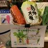 えぇっっ‼️袋で野菜が作れるのぉ~❔