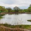 茶屋沼公園(福島県福島)