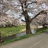 明日で東日本大震災から6年5カ月