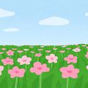 ☆晴れ晴れママのブログ☆   小学生・男の子との日々