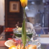 まかない 神戸三ノ宮の地鶏料理は安東