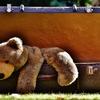 羊毛フェルトで「ひゃくとん」を作ってみた。~準備編~