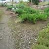 新しい試み 手作り農園づくり