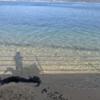1月11日:バイクで大三島を一周してきた