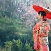 「もったいない」が、日本人から無駄を愛する気持ちを奪った?
