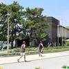 【福岡】木と緑のオアシス、大濠公園に行ってみた【スポット】