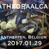 ベルギーひとり旅行記 (5) - ノートルダム大聖堂横のブラッセリー「Kathedraalcafe」