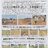 神原町花の会(花美原会)(264)    町民への花いっぱい活動PR作戦