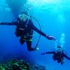 ♪ゴッドハンド女子が遂に…ダイバーに♪〜沖縄ダイビングライセンス・慶良間〜