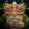 Codex VI / Shpongle