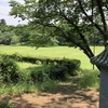 佐倉城(千葉県佐倉市)さんぽレポート【城さんぽ編】/日本100名城