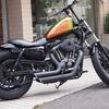 XL883 BURLY BRAND MX Style Peg