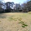 すみれば庭園の春