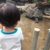 動物園再び。