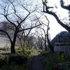2020年11月26日(木)荒川河口ルーティン&笹目橋周回 80.58km