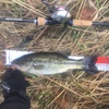 かずやさんと津軽釣行2days