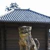 狛犬/東大寺 南大門+手向山神社/奈良町 御霊神社+鎮宅霊符神社 個性豊かに鎮座しています!