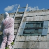 What To Expect During Asbestos Inspection?