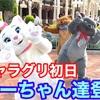 【本日初日】マリーちゃん達がグリーティング【ディズニーランド】
