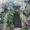 【東京】お花のテラス席でフレンチ♡