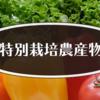 特別栽培農産物の基礎〜有機農業研修レポート〜