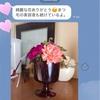 【日記】フライング母の日とLINE