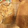 室温上昇とパンの発酵と、小さな河川から多くのプラごみ
