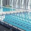 長水路のレースってどう泳ぐ?こうやって泳ぐんです!!