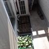 ナス、パプリカ、きゅうりなどを植え付けました