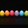 卵を分散しすぎているこの頃