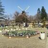 【ふなばしアンデルセン公園】子連れにおすすめ!1日中遊んでいられる大きな公園です