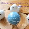 特別企画のAmari 遠隔、追加募集:今回はアルクトゥルス「青と白」