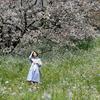 夏弥さんで春を待つ!その52