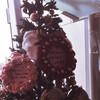 【花組】Delight Holiday 感想その5 12/6 11時公演の日替わり内容備忘録【ネタバレあり】