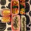 酢豚とカレー 〜今日のお弁当〜今日のわんこ〜