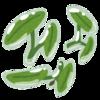 高山善行(2016.11)準体句とモダリティの関係をめぐって:中古語の実態