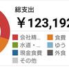 【シンママ手取り15万円】2019年1月の家計簿