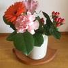 夫が花を買ってきた