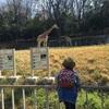 東山動植物園に行ってきました!