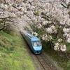 <ぶらり旅>御殿場線で山北駅へ  ~「桜のトンネル」を撮る