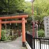 和泉市にて予期せず素晴らしい滝に出会う