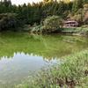 谷江の堤(富山県入善)