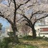 私達は心に桜を持っている