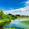 偽の青から出づるもの『雨池公園・八竜緑地』
